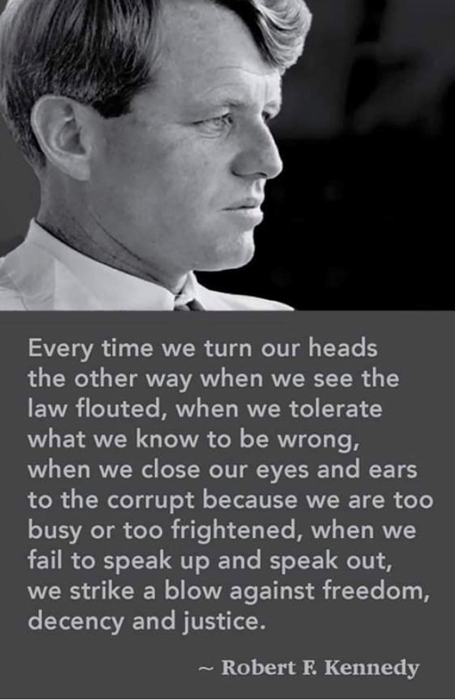 Every time we turn our heads the other way when we see the law flouted, when we tolerate what we know to be wrong, when we close our eyes and ears to the corrupt because we are too busy or too frightened, when we fail to speak up and speak out, we strike a blow against freedom, decency and justice. ~Robert F. Kennedy